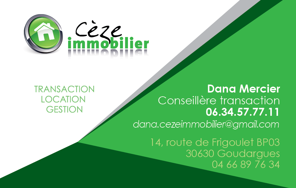 Speed Flyer Vous Propose Limpression De Vos Cartes Visite CEZE IMMOBILIER